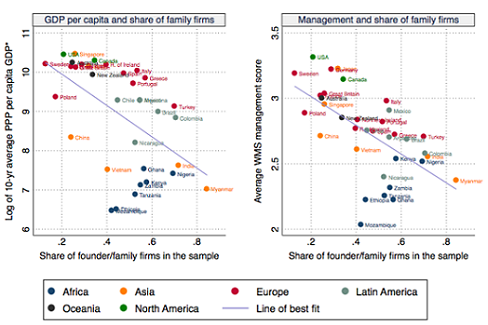 All in the family? The effect of family firm successions on firm organization in Africa and Asia