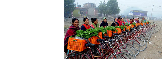 Micro-enterprise Development as a Poverty Reduction Strategy in Nepal: A Multidimensional Analysis of the Factors Determining Micro-enterprise Performance